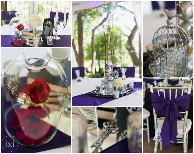star-wars-wedding-dr-who-wedding-hummingbird-house-wedding_0003
