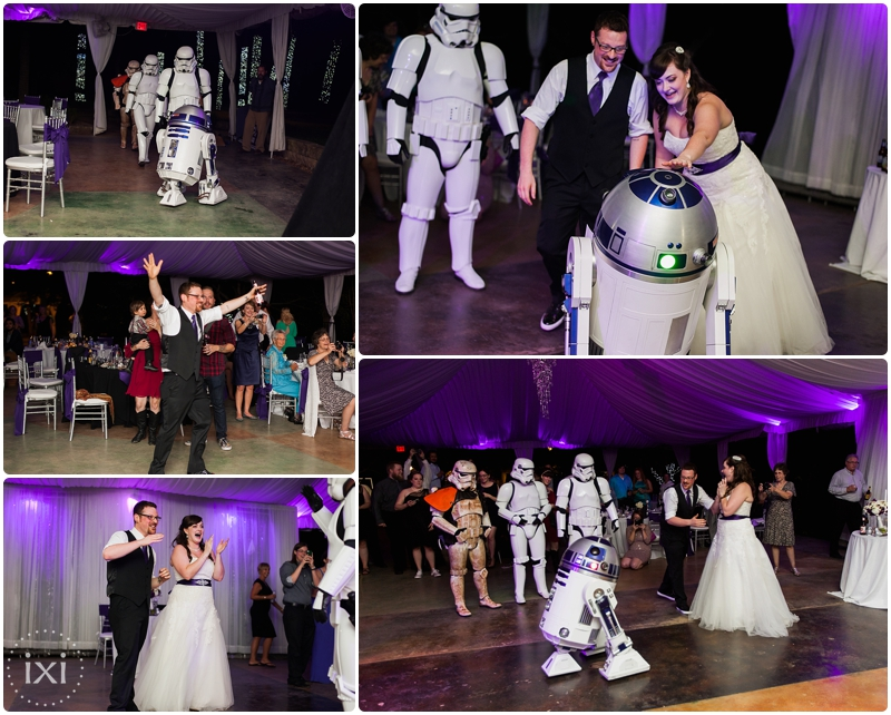 star-wars-wedding-dr-who-wedding-hummingbird-house-wedding_0050