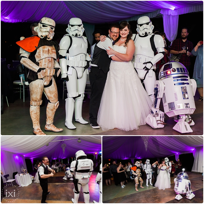 star-wars-wedding-dr-who-wedding-hummingbird-house-wedding_0053